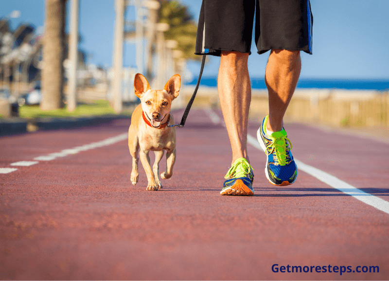 Walk your dog to get more steps